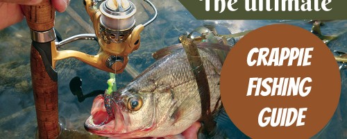 The Ultimate Crappie Fishing Guide