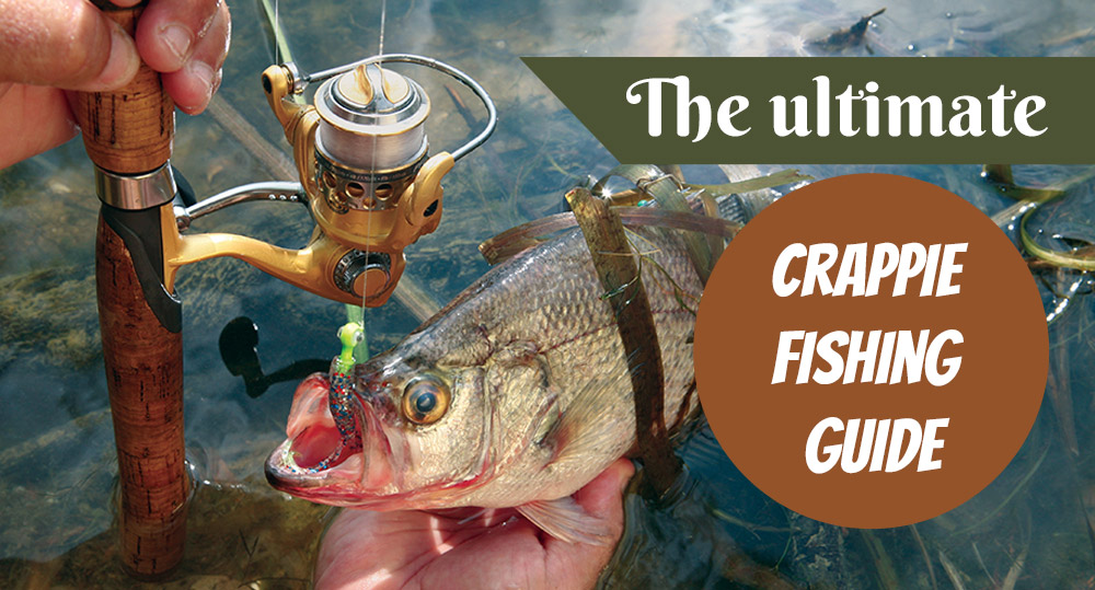 Featured Image For How to Fish Crappie – Crappie Fishing Guide