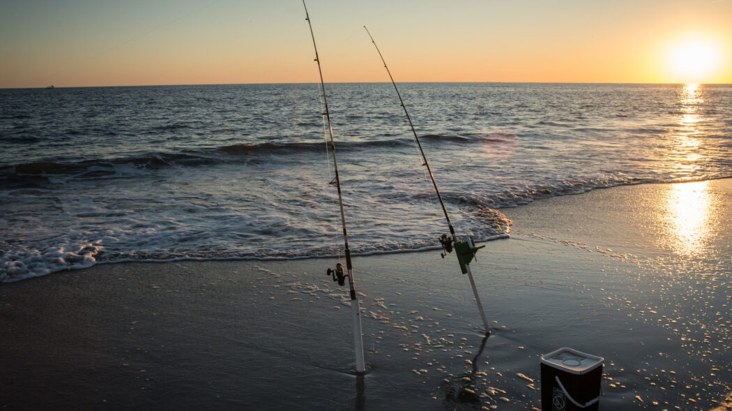 Featured Image For Best Surf Fishing Rigs: Basic, Fish Finder, Hi-Lo, Breakaway