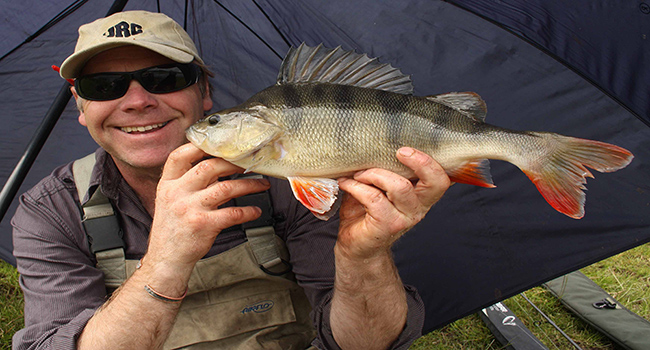 Featured Image For Best Bait for Perch – Catch Yellow, White & Barred Surf Perch